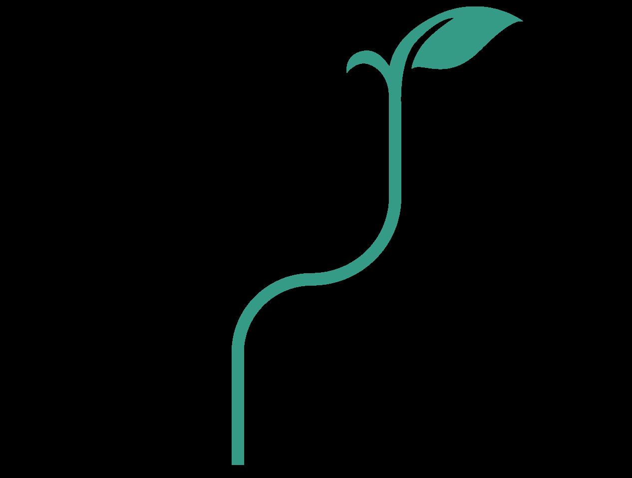 موسسه راهبردی سپهر افرا (رسا)